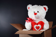 Teddy Bear As Gift Stock Images