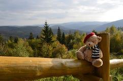 Teddy Bear auf einer Reise stockbild