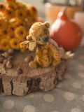Teddy bear and autumn foliage Stock Images