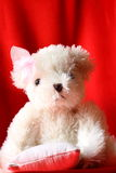 Teddy bear B Royalty Free Stock Images