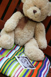 Teddy bear and baby ultrasound Stock Image