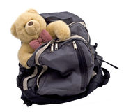 Teddy Bear in a Backpack Royalty Free Stock Photo