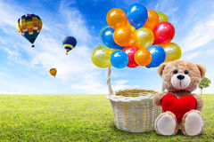 Teddy bear and balloon basket