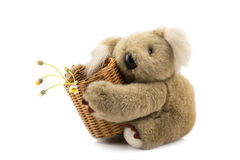 Teddy bear and bamboo basket of glass flowers Royalty Free Stock Image