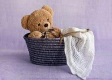 Teddy bear in basket Stock Image