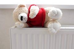 Teddy bear on the battery