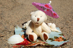 Teddy Bear at the Beach. A cute teddy bear at the beach on a sunny day Stock Image