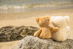 Teddy bear on the bear Stock Images