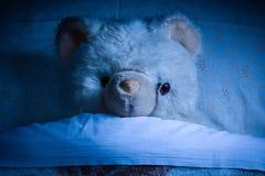Teddy Bear on Bed Stock Photography