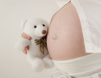 Teddy bear with belly Royalty Free Stock Images