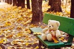 Teddy bear on the bench in autumn park. Teddy bear sitting on the bench in autumn park Royalty Free Stock Photography