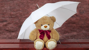 Teddy bear on the bench with an umbrella Royalty Free Stock Photography