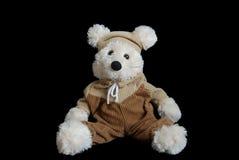 Teddy bear on black background Stock Photos
