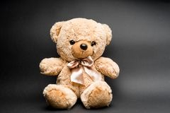 Teddy bear on black. Surface. Kids toy. Brown and soft stock photos