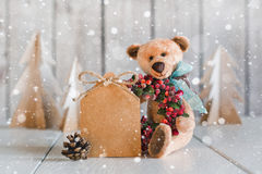 Teddy Bear with blank forms for congratulations Royalty Free Stock Photos