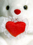 Teddy Bear with a blank heart. Close up of a white teddy bear holding a heart shaped pillow Royalty Free Stock Images