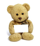 Teddy bear with blank note card. Close up of teddy bear holding blank note card on white background with clipping path Stock Photography