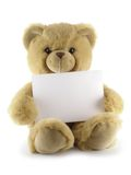 Teddy bear with blank sheet. Isolated over white background stock images