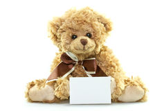 Teddy bear with blank sheet Royalty Free Stock Image