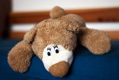 Teddy bear on the blue bed. Photo of a teddy bear on the blue bed Stock Photo