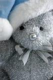 Teddy Bear with blue Santa hat. A silver teddy bear wearing a blue Santa hat royalty free stock photos