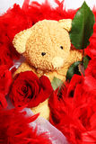 Teddy bear with boa Stock Images