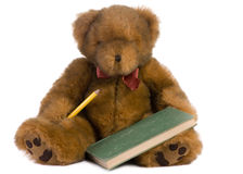 Teddy bear with book Royalty Free Stock Photos