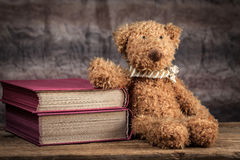 Teddy bear. Royalty Free Stock Image