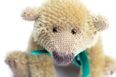 Teddy Bear with bow Stock Photography