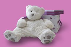 Teddy bear and a gift box on a pink background royalty free stock photography