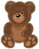 Teddy bear brown. Vector Illustration Stock Images