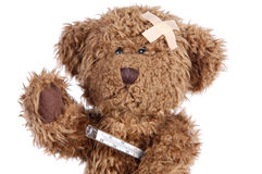 teddy bear brown Zdjęcia Stock