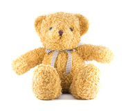TEDDY BEAR brown color with ribbon on white background Royalty Free Stock Image