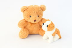Teddy Bear and brown dog dolls, brown ears. Teddy Bear and brown dog dolls, brown ears on a white background Royalty Free Stock Photography