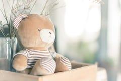 Teddy Bear Brown draagt in houten doos royalty-vrije stock foto