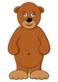 Teddy-bear brown isolated Stock Images