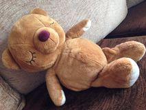 Teddy bear. A brown teddy bear in sleeping time Stock Photo
