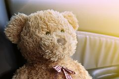 Teddy Bear Brown stänger sig upp ensam känsel i min bil royaltyfri fotografi