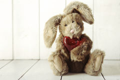 Teddy Bear Bunny With Valentine or Anniversary Love Theme Royalty Free Stock Image