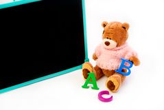 Teddy Bear is busy education Royalty Free Stock Photos