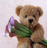 Teddy bear with calla lilie Royalty Free Stock Photography