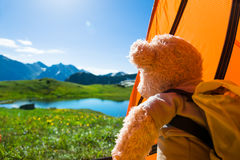 Teddy bear camping Royalty Free Stock Images