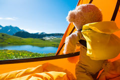 Teddy bear camping. In mountains stock image