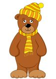 Teddy bear in cap and scarf Stock Photo