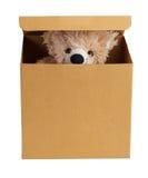 Teddy bear in a cardboard box Stock Photography