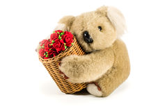 Teddy bear carrying bamboo basket full of red roses Stock Photos