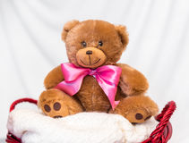 Teddy bear on the child basket Stock Photography
