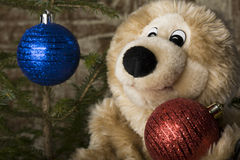 Teddy bear & Christmas Stock Photo