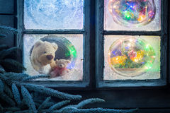 Teddy bear for Christmas in frozen window with tree and lights Royalty Free Stock Photo