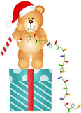 Teddy Bear with Christmas Lights Royalty Free Stock Image